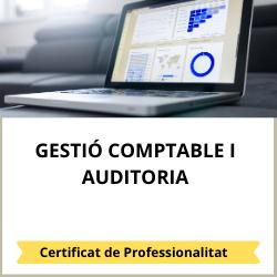 Gestió comptable i administrativa per a auditoria