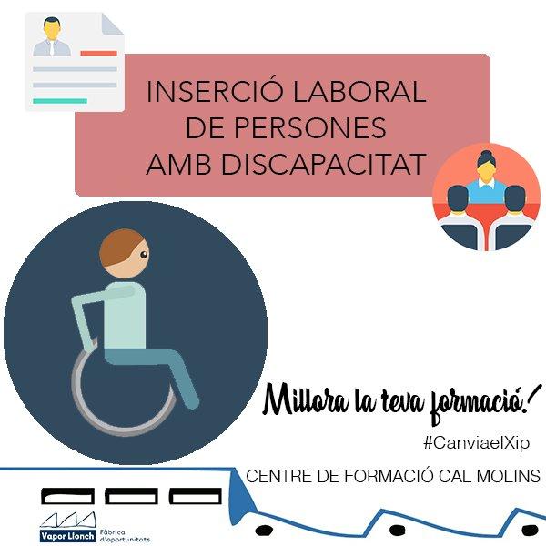 Curs d'Inserció Laboral de persones amb discapacitat