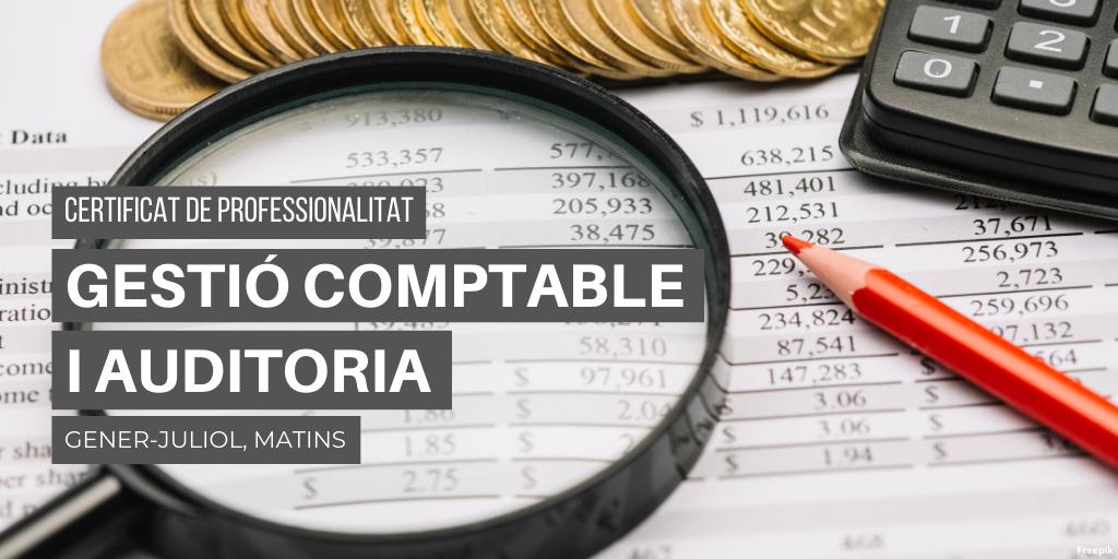 Gestió comptable i gestió administrativa per auditoria