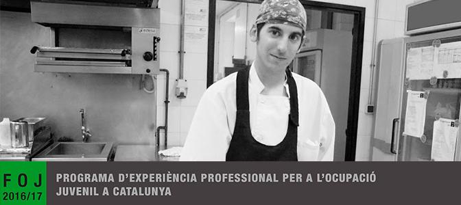 programa d'experiència profesional per a l'ocupació juvenil a Catalunya